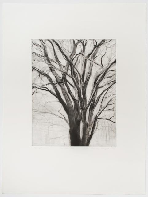 , 'The Elm Tree,' 1991, Brooke Alexander, Inc.