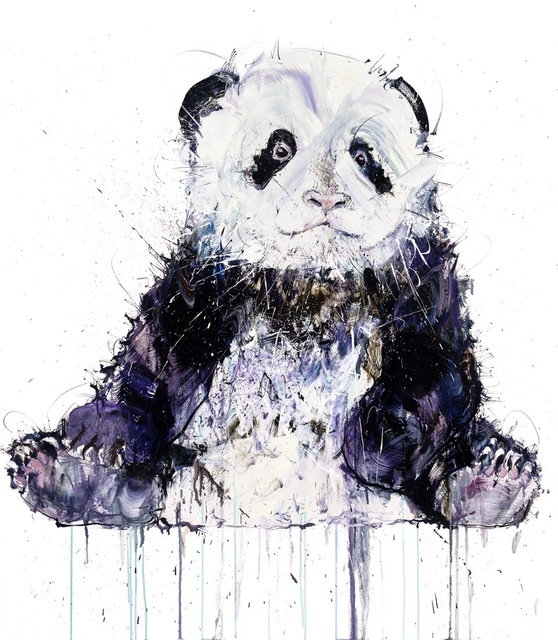 Dave White, 'Young Panda II (XL)', The Drang Gallery