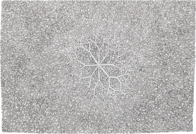 Ruth Asawa, 'Untitled (SD.085, Sculpture Drawing: Tied wire with 8 branches)', ca.1970, Phillips