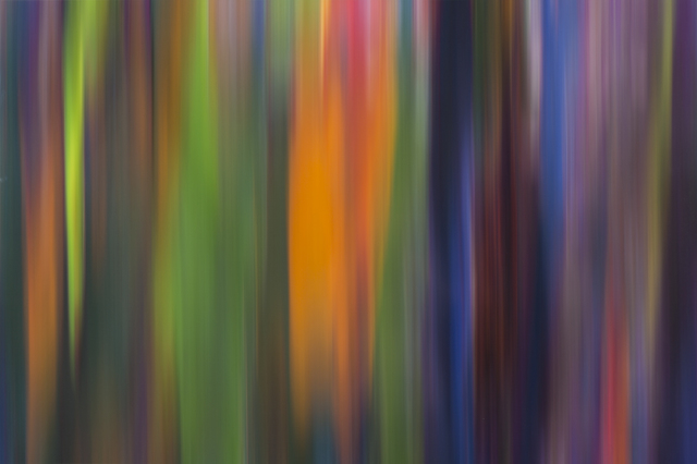 , 'Corteza, Colores en Movimiento - Filage I,' 2015, Galería RGR