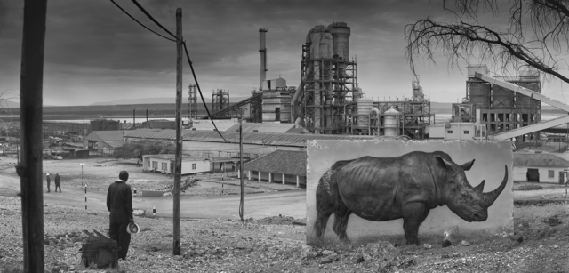 Nick Brandt, 'Factory with Rhino', 2014, Fahey/Klein Gallery
