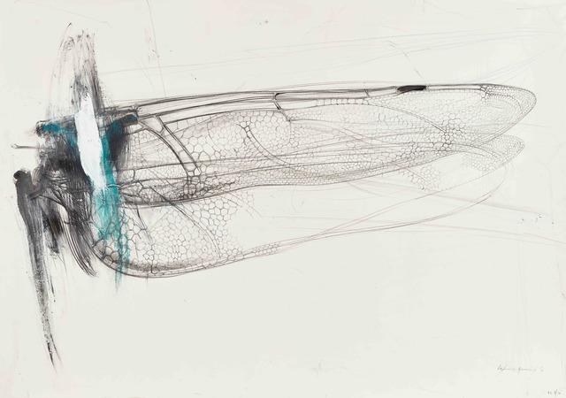 , 'Dragonfly wing,' 2016, rosenfeld porcini