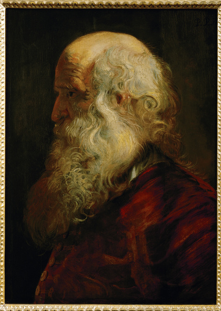 Peter Paul Rubens, 'Study of an Old Man', ca. 1610, Erich Lessing Culture and Fine Arts Archive