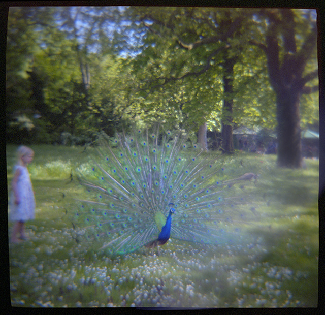 , 'Girl and Peacock, Parc de Bagatelle, Paris,' 2016, Gallery NAGA