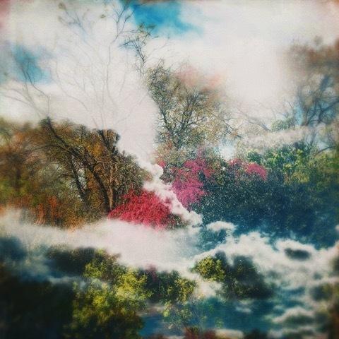, 'Quivers of Spring,' , Sara Nightingale Gallery