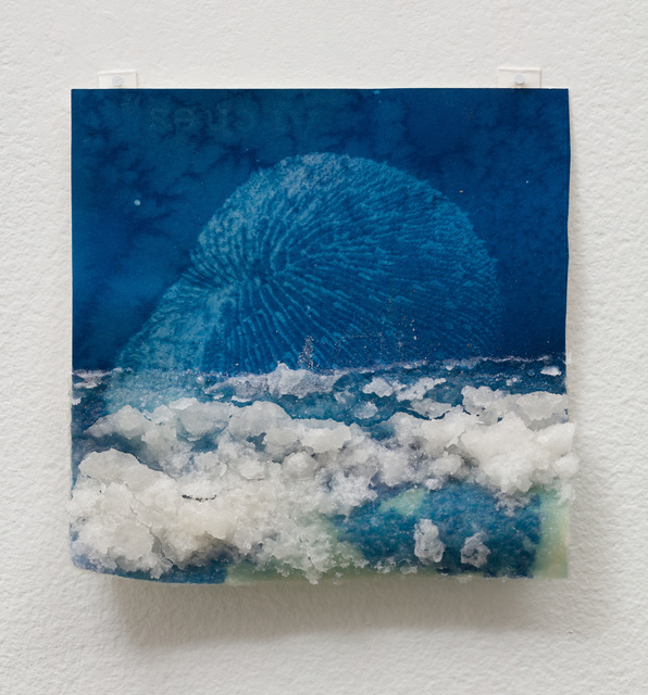 Andrea Chung, 'Mushroom Coral', 2019, Klowden Mann