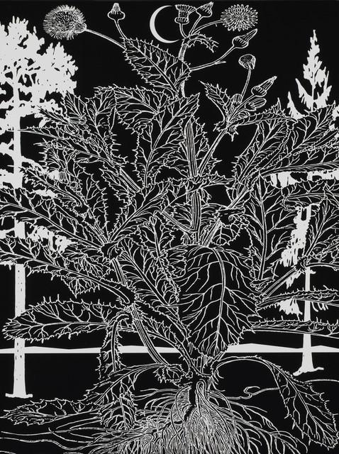 Paul Morrison, 'Untitled 03 from Calathidium', 2006, Print, Screenprint, Paragon