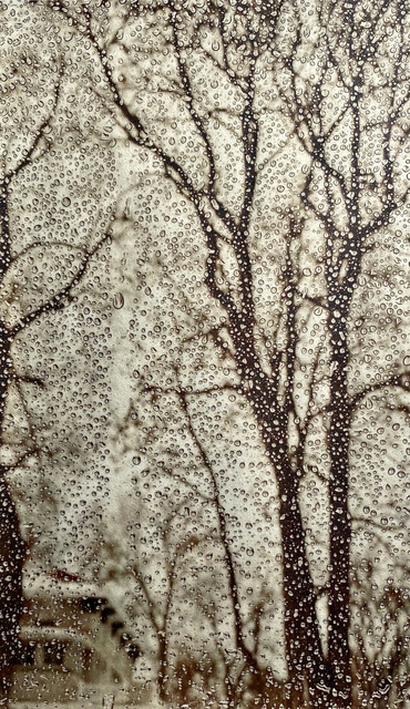 Wendi Schneider, 'As the Snow Melts', 2020, Photography, Pigment ink on vellum over white gold leaf, Rick Wester Fine Art