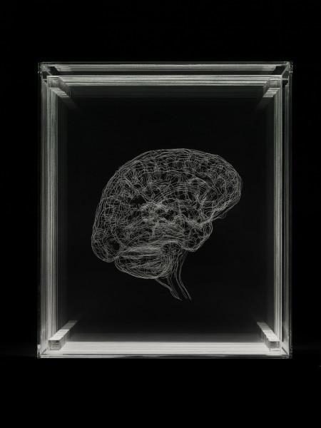 Angela Palmer, 'Brain of the Artist', 2012, Zuleika Gallery