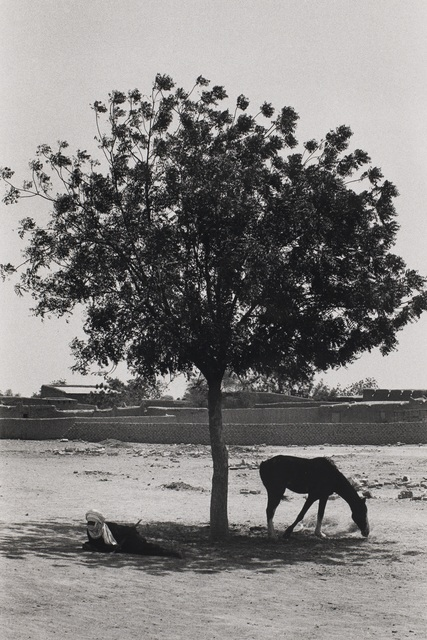 """, 'Untitled, from the series """"African Desert"""",' 1975, Tracey Morgan Gallery"""