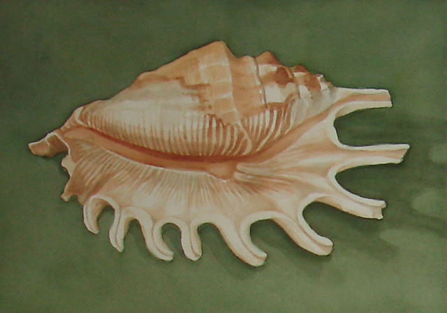 , 'Arms Extended (Jersey Shell),' 2013, InLiquid