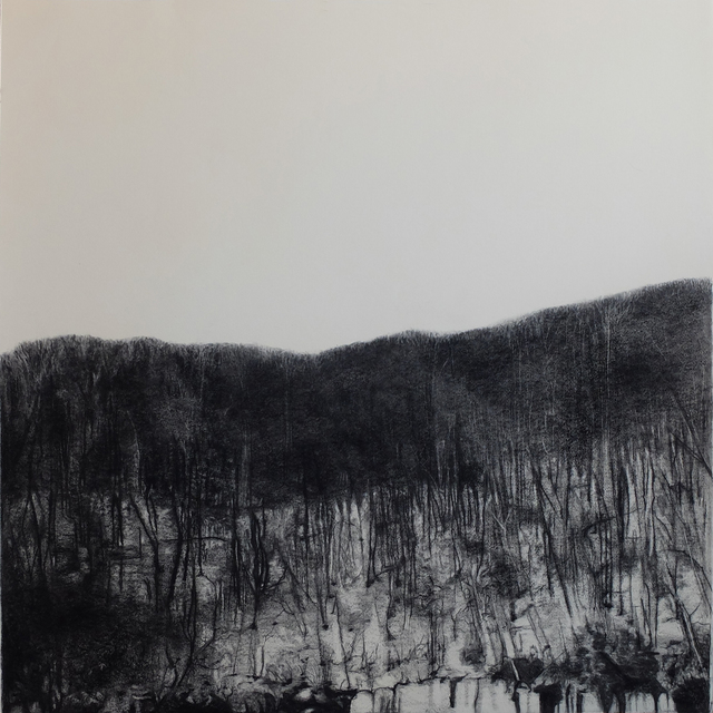 Irene González, 'Paisajes en espera', 2014, Drawing, Collage or other Work on Paper, Conte on paper, Galería Silvestre