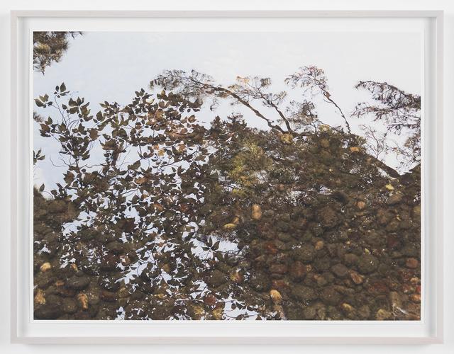 , 'Reflection Study (Kenrokuen),' 2017, James Cohan