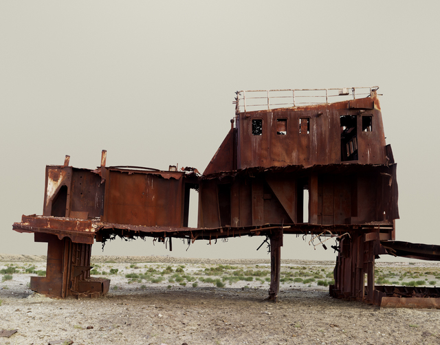, 'The Aral Sea III (Fishing trawler) Kazakhstan 2011,' 2011, Flowers