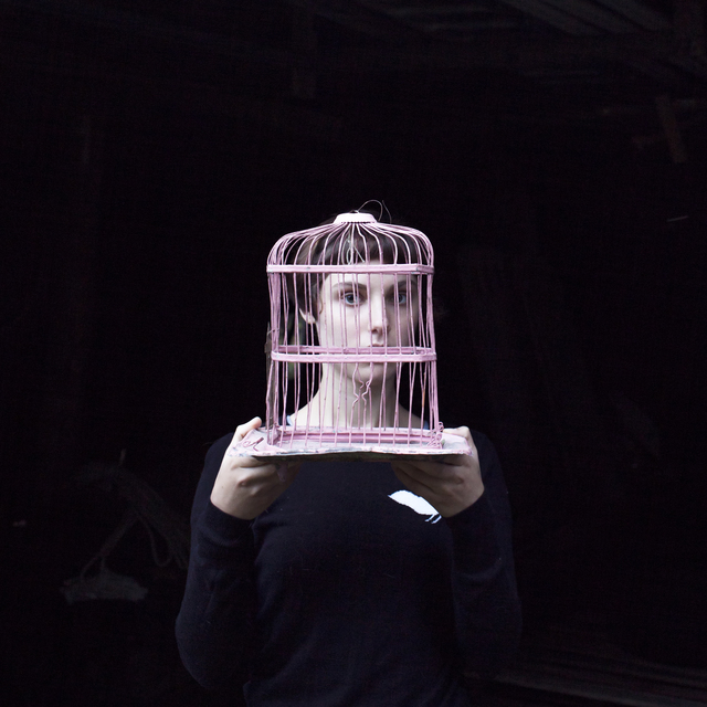 , 'Sadie & The Birdcage, Tenant's Harbor, Maine,' 2013, Robert Mann Gallery