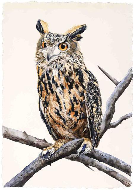 , 'Eagle Owl,' 2018, Wally Workman Gallery