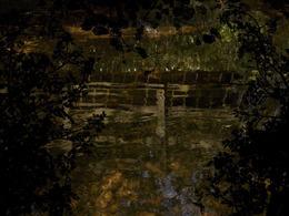 Susan Derges, 'Water Drop Wort Bridge', 2013, Danziger Gallery