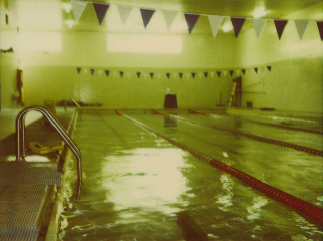 Stefanie Schneider, 'Green Pool II', 2004, Photography, Digital C-Print based on a Polaroid, not mounted, Instantdreams