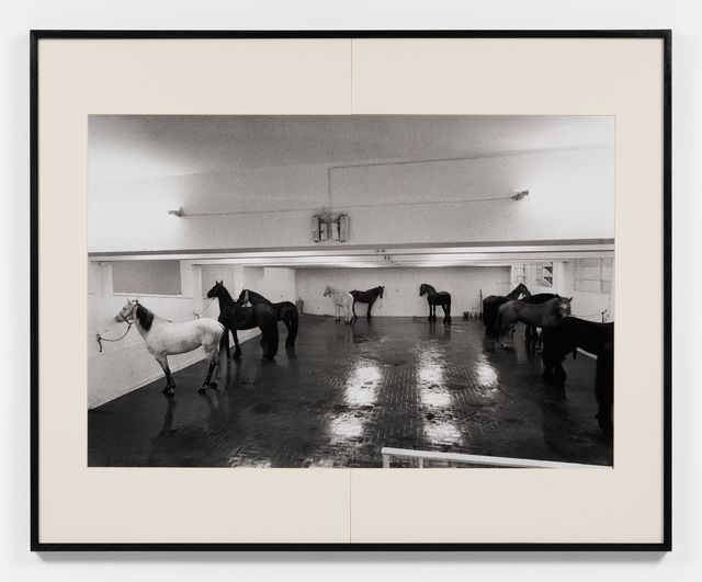 , 'Jannis Kounellis - 12 cavalli,' 1969, Almine Rech