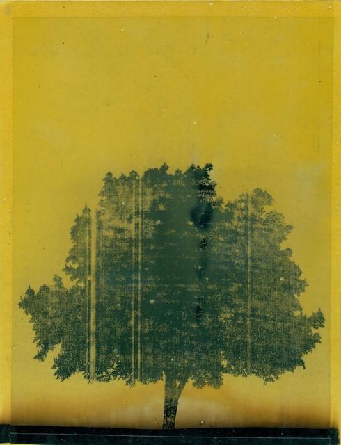 , 'Untitled,' 2014, Arróniz Arte Contemporáneo