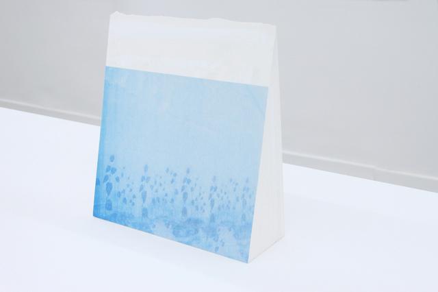 , 'Voiles,' 2014, Galerie Christophe Gaillard