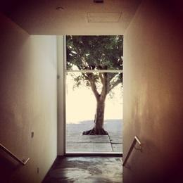 Anatomy of Solitude #