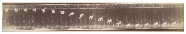 Étienne-Jules Marey, 'Lapin—Évolution de la chute (Rabbit—Evolution of the fall)', 1894, San Francisco Museum of Modern Art (SFMOMA)