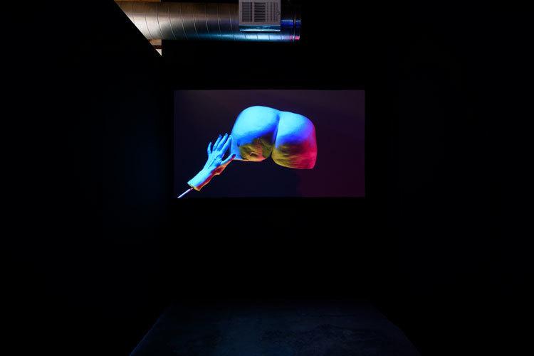 Julie Weitz, 'The Hand Network: Humdog, a prelude', 2017, installation view, Chimento Contemporary. Photo: Ruben Diaz