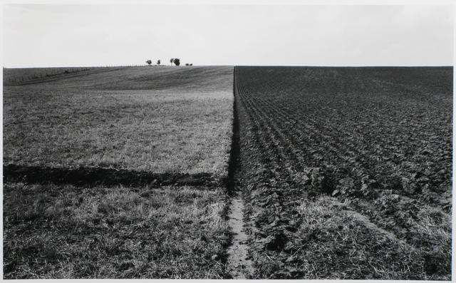, 'Near Temple Sowerby, Cumbria, England,' 1980, photo-eye Gallery