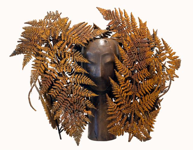 , ' Helechos ,' 2011, Contini Art Gallery