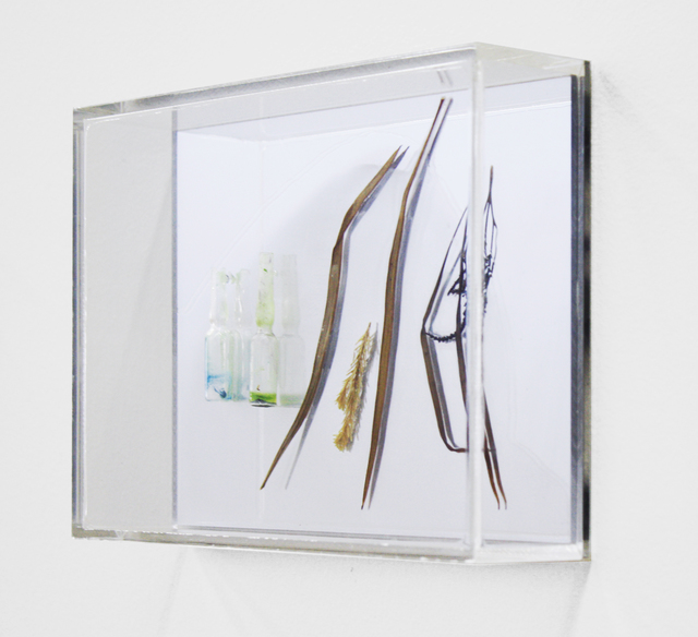 , 'Chlorophyll conversation I,' 2013, Dominik Mersch Gallery