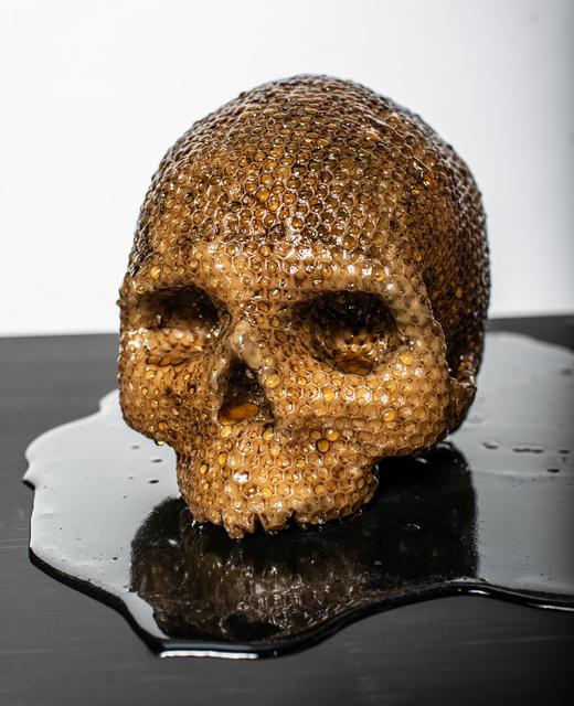 , 'Death Honey Black,' 2019, MAIA Contemporary