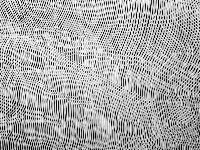 , 'Lines 25,' , Ashok Jain Gallery