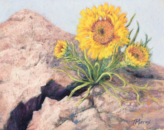 Tracey Maras, 'And the Sun Will Rise', 2020, Painting, Pastel, Springfield Art Association