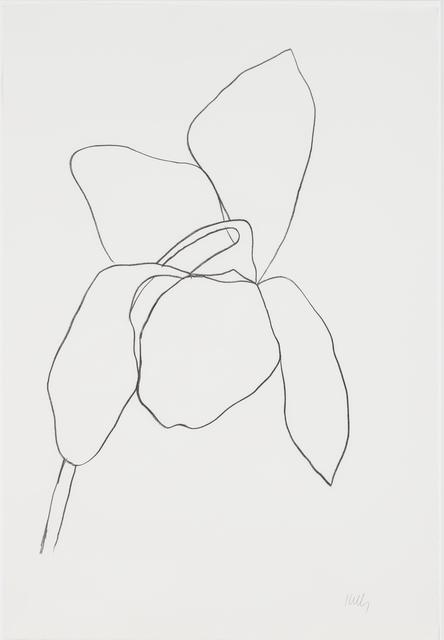 Ellsworth Kelly, 'Cyclamen I', 1964-1965, Susan Sheehan Gallery