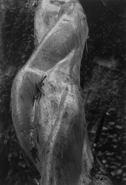 Pirkle Jones, 'Mount Tamalpais, #11', 1980, Lumière