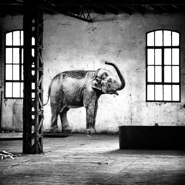 , 'L'Elephant à l'Usine Brusson,' 2018, Mazel Galerie