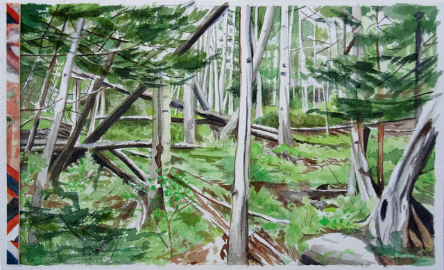 , 'Forest,' , form & concept