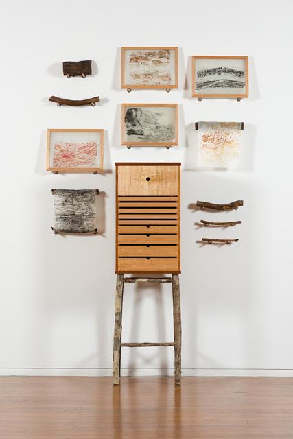 , 'Beetlearium,' 2018-2019, Roslyn Oxley9 Gallery