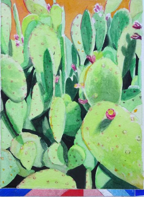, 'Cacti,' 2017, form & concept