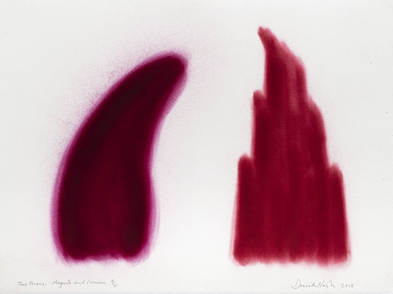 , 'Two Forms, Magenta and Crimson,' 2018, Galerie Lelong & Co.