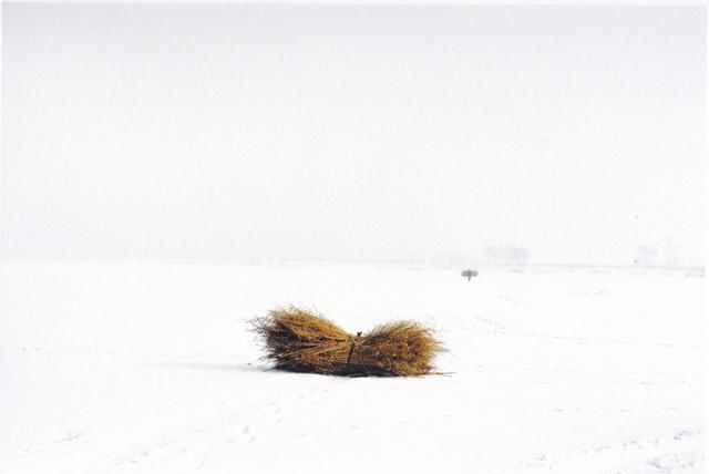 , 'La botte de foin,' 2012-2013, galerie SIT DOWN