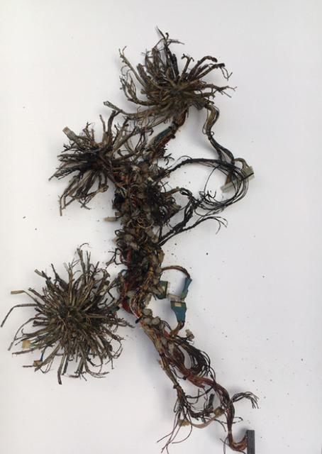 , 'Postnaturalia - Octopi Internet,' 2018, Galerie Ron Mandos