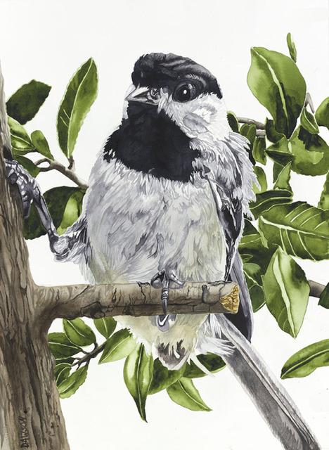 , 'Chickadee: Toe Hold,' 2018, Wally Workman Gallery