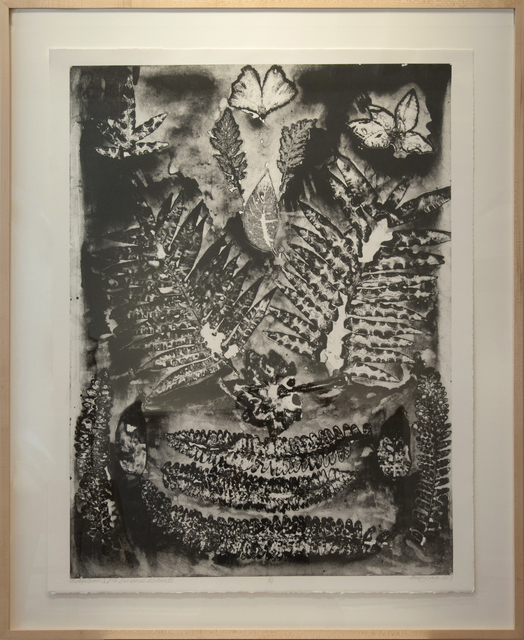 , 'Motifs From ISU Greenhouse (Selection II),' , Main Street Arts