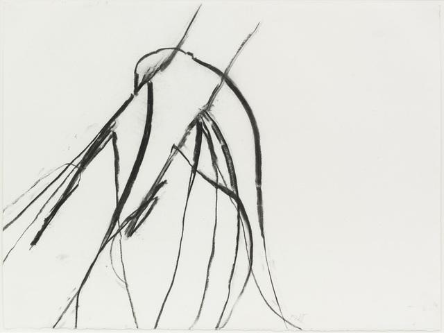 , 'Nov. 26 2011 #2, Blue lyme grass (Leymus arenarius),' 2011, Zeno X Gallery