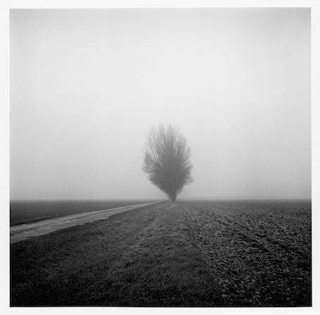Paul Hart, 'Lundy's Farm', 2013, The Photographers' Gallery | Print Sales