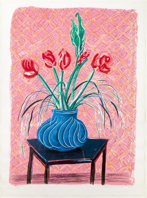 , 'Amaryllis in Vase,' 1984, Susan Sheehan Gallery