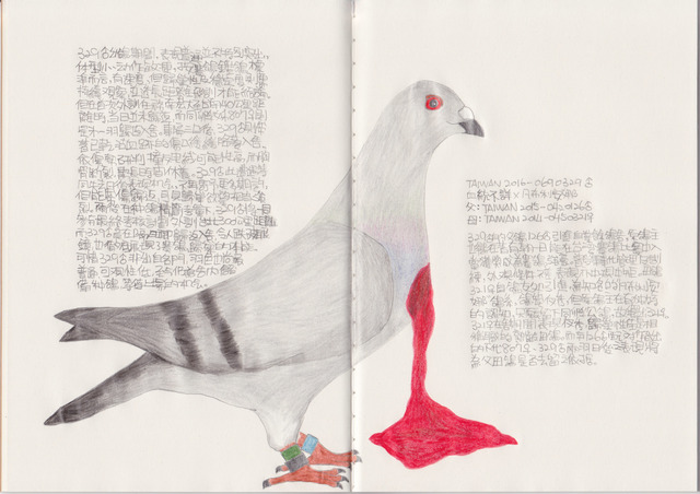 Lee Lichung, 'Pigeon - TAIWAN 2016-0690329', 2018, Drawing, Collage or other Work on Paper, Color pencil, Recycled paper notebook, Powen Gallery