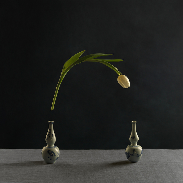 , 'Tulip and Two Vases of Chinese Porcelain ca. 1700,' 2013, Photo12 Galerie